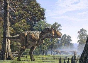 Тираннозавр питался детенышами травоядных динозавров?