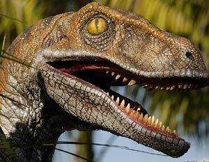 Совместная охота динозавров?